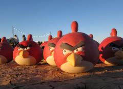 Angry birds, Special Effects Fabrication, Cape Town