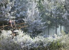 Ferrero Rocher. Special Effects Snow Cape Town