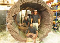 Fabricated tree trunk, Special Effects Fabrication Cape Town
